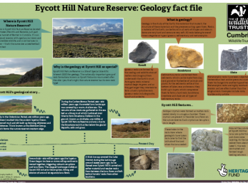 Eycott Hill Nature Reserve: Geology fact file