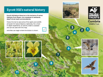Eycott Hill's natural history: map