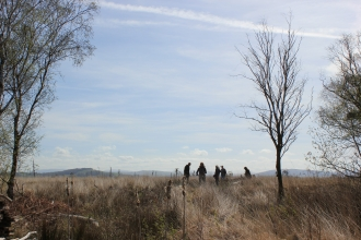 image of people silhouettes at Foulshaw Moss Nature Reserve