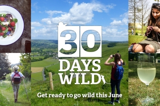 30 Days Wild promotional banner