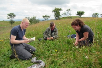 Image of Eycott Hill Nature Reserve Coronation Meadow survey with Louise Richards and volunteers