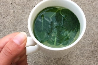 A mug of mint tea