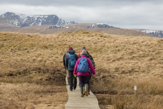Group of walkers crossing wooden boardwalk over Eycott Hill Nature Reserve wetland with snow topped fells in background