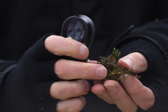 Hands in fingerless black gloves holding a lichen and hand lense