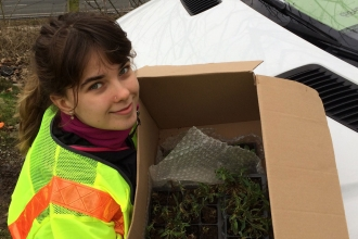 image of Conservation apprentice Sian Bentley carrying a box of plant plugs wearing a hi-vis jacket