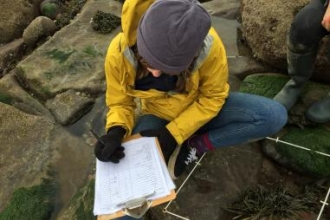 image of Sian Bentley doing a shoresearch survey at st bees beach