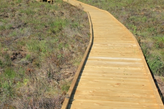 Photo of the boardwalk and osprey viewing area at Foulshaw Moss Nature Reserve