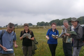 People studying grasses at Eycott Hill Nature Reserve