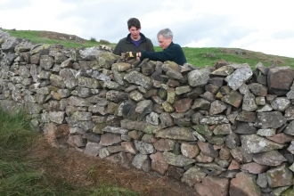 Volunteers drystone walling at Eycott Hill Nature Reserve