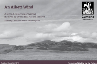 Cover of An Aikett Wind anthology