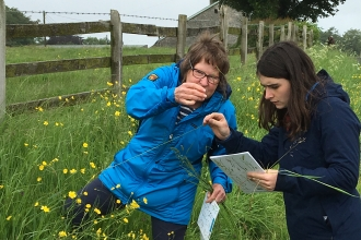 Image of volunteers identifying grasses at Plumgarths, Kendal