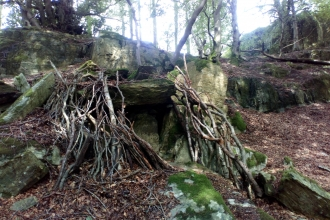 Den at Staveley Woodlands