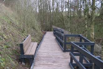 New board walk trees and bench at Smardale