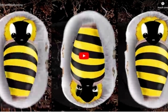 Image of still from Get Cumbria Buzzing animation