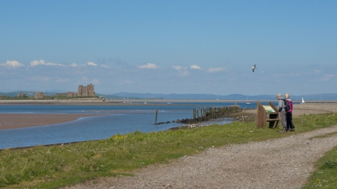 South walney nature reserve and piel castle with people looking at wildlife interpretation board - copyright john morission
