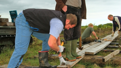 Image of volunteers building Drumburgh boardwalk