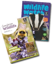 image of cumbria wildlife trust membership magazines