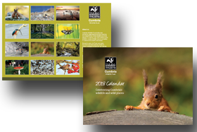 image of 2018 cumbria wildlife trust calendar front and back cover