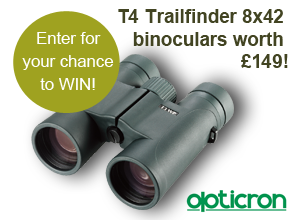 image of a pair of opticron t4 trailfinders binoculars