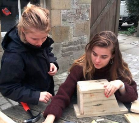 image of Sian Bentley and Grainne Martinwells making bird boxes