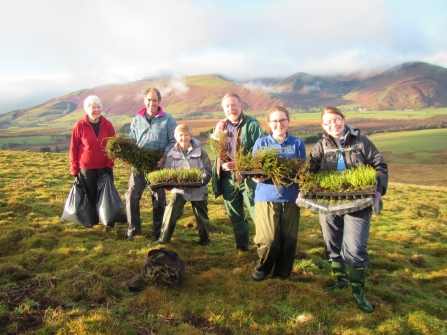 Volunteers at eycott hill with heath plants