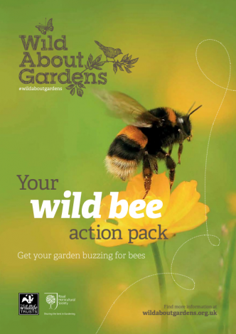 image of Help wild bees guide front cover