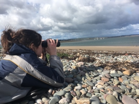 Image of Jade Allen surveying grey seals at South Walney Nature Reserve