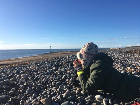Image of Melanie Shears surveying grey seals at South Walney Nature Reserve