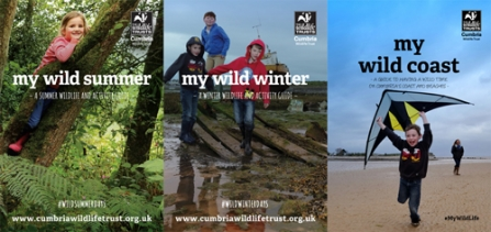 My Wild Coast, Summer and Winter covers