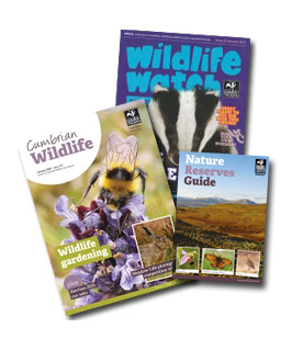 Membership magazine & nature reserve guide cover thumbnails