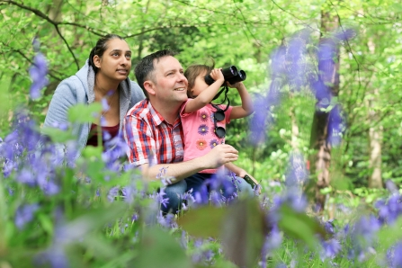 Family birdwatching in a bluebell woods - copyright Tom Marshall
