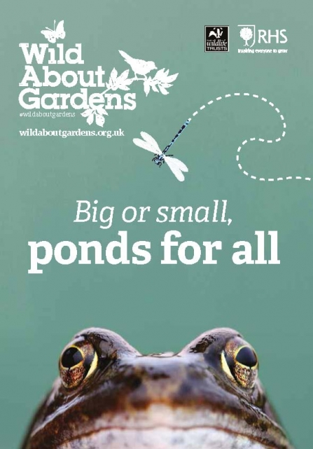 Image of cover of Wild About Garden - ponds leaflet 2019