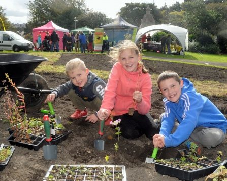 Children plant wildflower plug plants