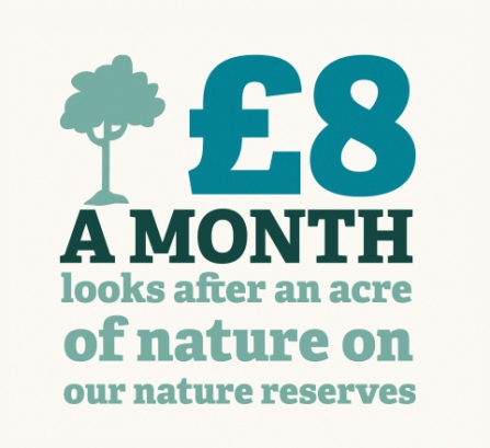 infographic - £8 a month looks after an acre of nature on our nature reserves