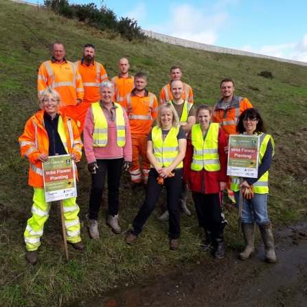 Volunteers help plant wild flowers at Distington