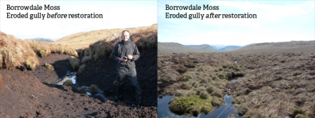 Borrowdale Moss before and after restoration