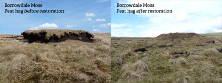 Borrowdale Moss peat hag before and after restoration