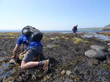 Rock pooling on Rathlin Island 2016