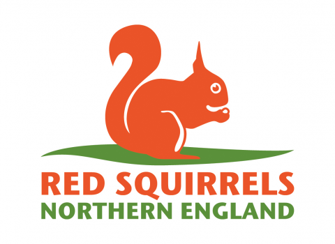 Image of Red squirrels northern england logo