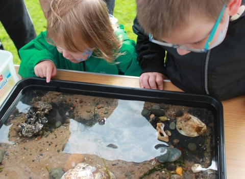 Image of kids looking into a mobile rock pool