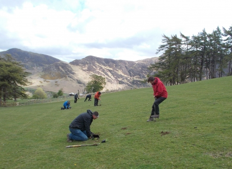 Image of Volunteers plug planting hay meadow